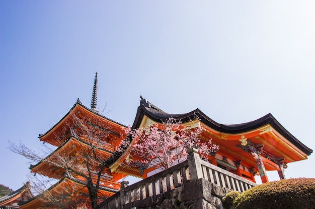 Красивая архитектура внутри храма киёмидзу-дэра во время вишни