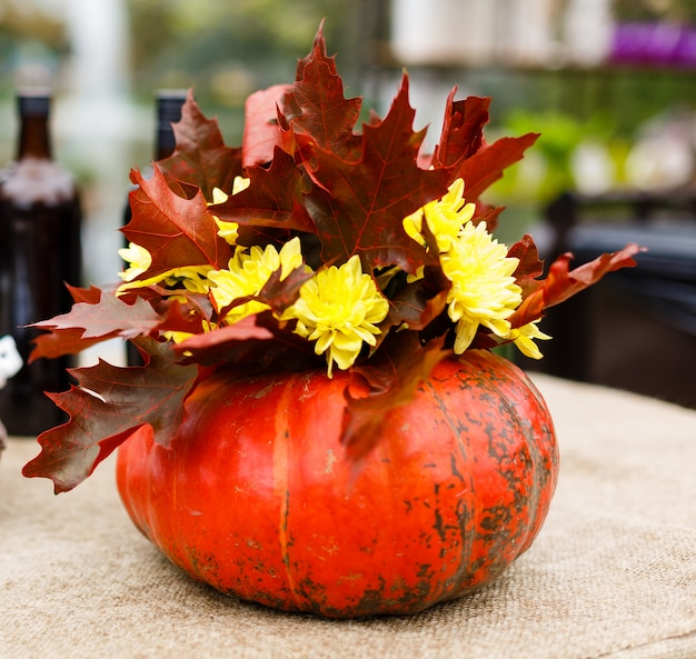 Beautiful arrangement of typical for autumn and thanksgiving pumpkins