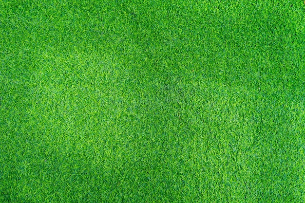 Beautiful artificial grass texture