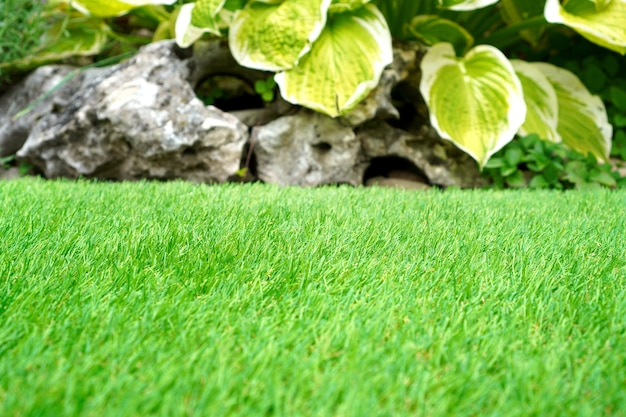 Beautiful artificial grass in the yard.