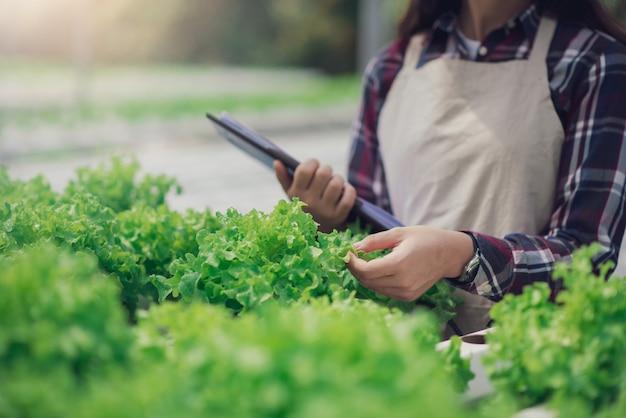 Красивый азиатский фермер изучает выращивание овощей на гидропонике и анализирует