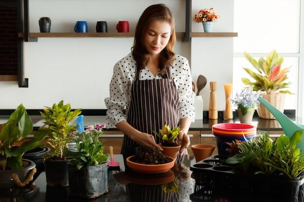 Красивая азиатская женщина в фартуке готовит и расставляет стручки маленьких цветов и деревца для украшения в новом открытом кафе.