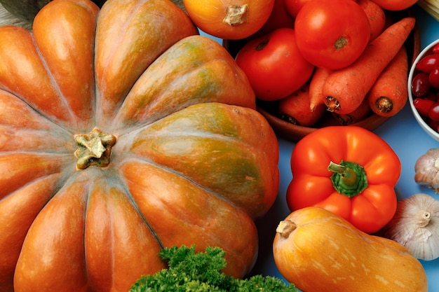 Beautiful assortment of colorful vegetables on blue surface