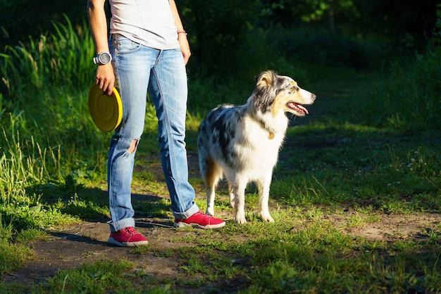 Красивая австралийская овчарка рядом с владельцем домашнего животного с фрисби в руке, стоя вместе в парке