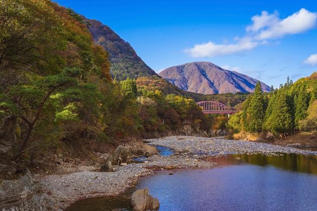 일본 aizuwakamatsu, tonohetsuri의 아름다운 가을