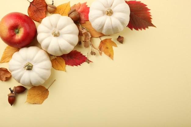 Beautiful autumn background with fallen leaves with place for text top view