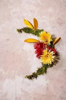Красивый осенний ботанический венок, творческий макет с цветами, мхом и желтыми осенними листьями на бежевой бетонной поверхности. плоская планировка, копия пространства