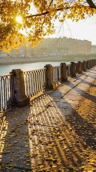 太陽光線とウォーターフロントに黄色のカエデの美しい秋の街の風景
