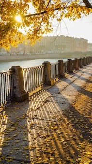 Beautiful autumn city landscape with sun rays and yellow maples on the waterfront