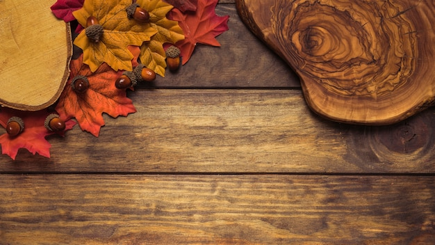 Beautiful autumn composition with leaves and wood
