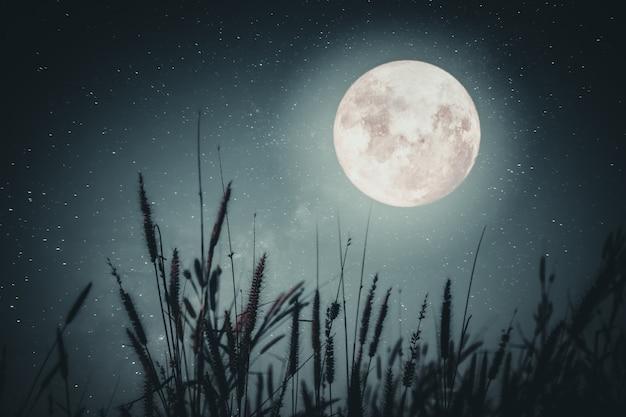 美しい秋のファンタジー - 秋の季節のメープルツリーと夜の空の背景の乳白色の星の満月。ヴィンテージ色調のレトロスタイルアートワーク
