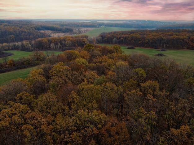 Красивый осенний лес - вид сверху
