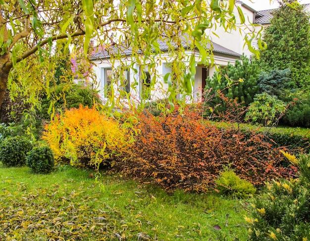 집 배경에 떨어지는 낙엽이 있는 아름다운 가을 정원