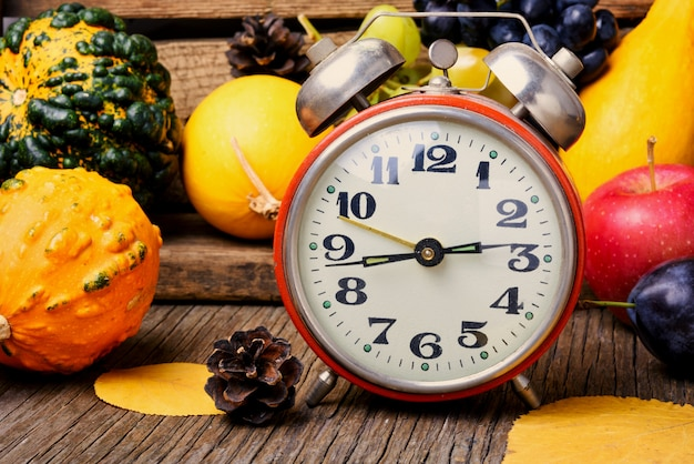 Beautiful autumn harvest and clock