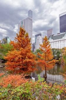 セントラルパークの美しい秋の風景