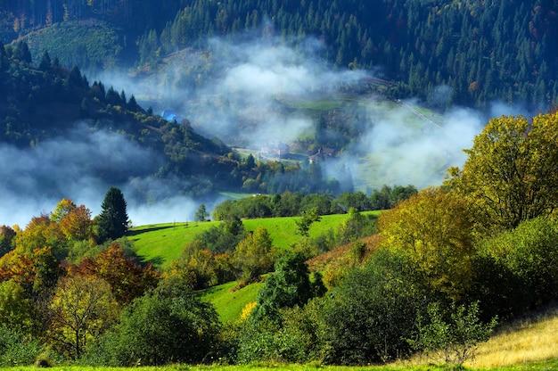 Красивый осенний пейзаж в горах карпаты в лесу