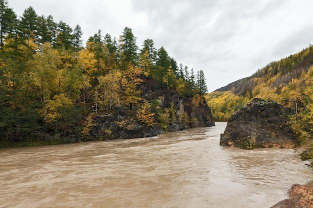 다채로운 숲을 통해 바위 산 사이 흐르는 아름다운 가을 풍경 산 강