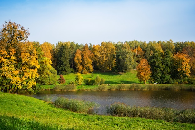 Beautiful autumn landscape with golden trees by the lake. pavlovsk. russia.