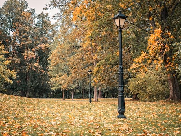 Красивый осенний пейзаж с лампой старой моды