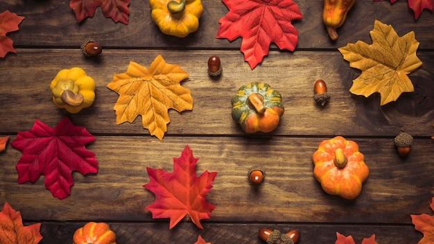Beautiful autumn leaves, acorns and pumpkins set