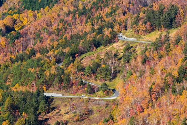 Beautiful autumn mountain at takamura village, yamada-onsen, nagano, japan.