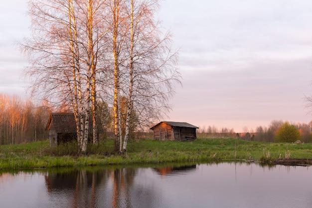 美しい秋または春の風景、背の高い白樺の木陰の池や湖のほとりにある古いログハウス。