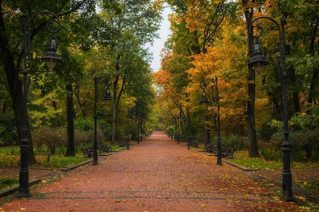 아름다운 가을 공원과 황량한 트레일