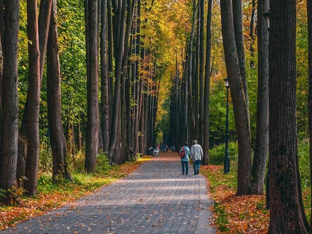 歩く人のシルエットが美しい秋の公園。モスクワ。