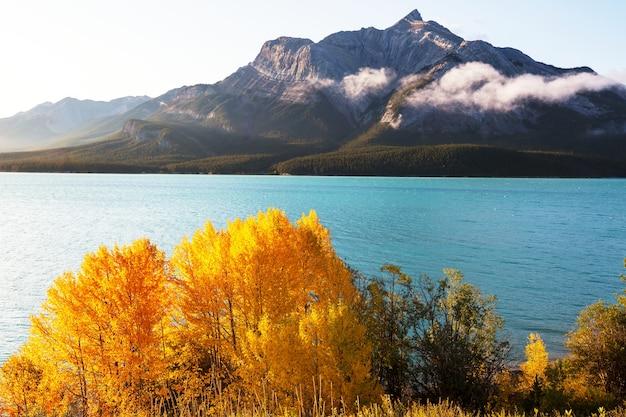 Прекрасный осенний сезон в канадских горах. падение фона.
