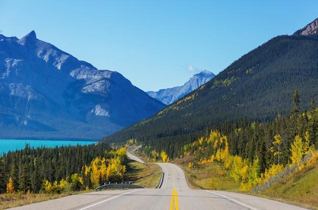 캐나다 산의 아름다운 가을 시즌. 가을 배경.