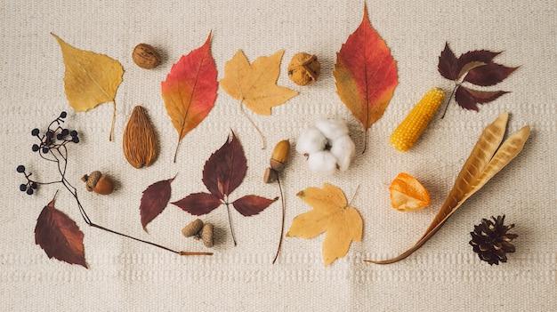 아름다운 가을 계절 배경