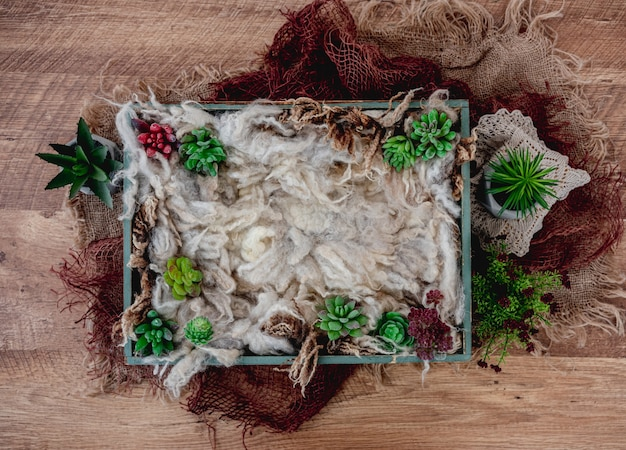 Красивый фон для фотосессии новорожденных с разноцветными растениями. цифровой композит с деревянным ящиком, наполненным мехом и стоящим на вретище
