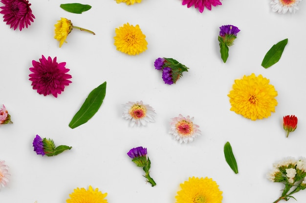 Beautiful background made of bright flower buds flat lay