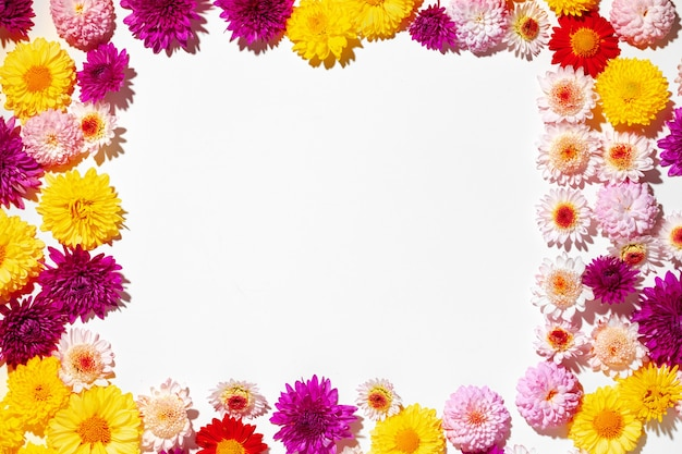 Beautiful background made of bright flower buds