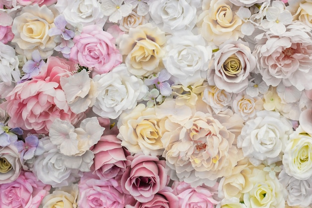 Beautiful background of white and pink roses