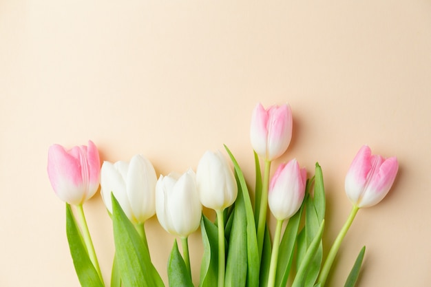 Beautiful background with spring flowers on pastel. spring concept