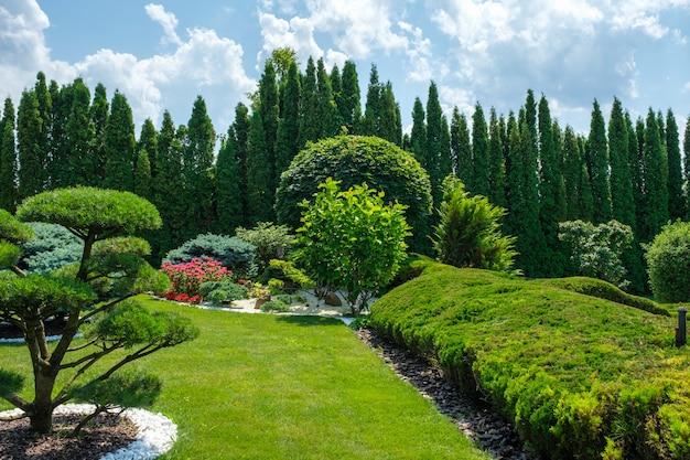 Красивый сад на заднем дворе с красиво подстриженными кустами бонсай и деревьями.