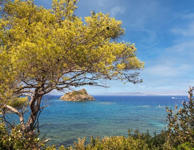 프랑스 남부 porquerolles 섬에 맑은 청록색 물이 있는 아름다운 만