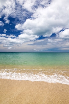 美しいビーチと熱帯の海