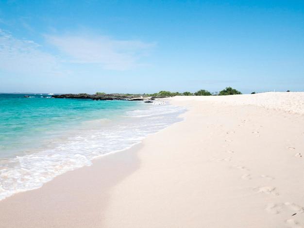Bellissima spiaggia alle isole galápagos, ecuador