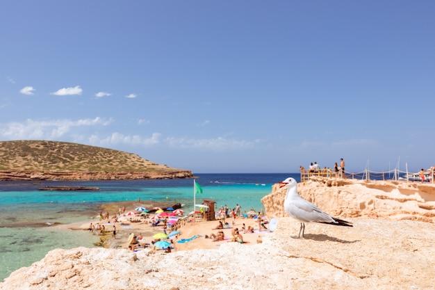 Красивый пляж с бирюзовой водой на острове ибица, испания