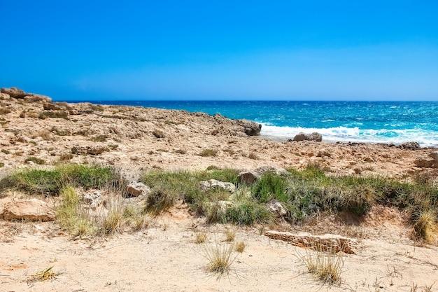 배경의 자연 속에서 파도가 있는 아름다운 해변