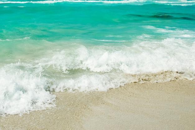 表面の自然の中で波のある美しいビーチ