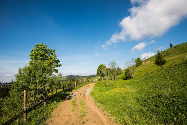Beautiful bewitching view of a rural village located in a hilly area among spruce and deciduous trees and grass against of white clouds and blue sky. place for text