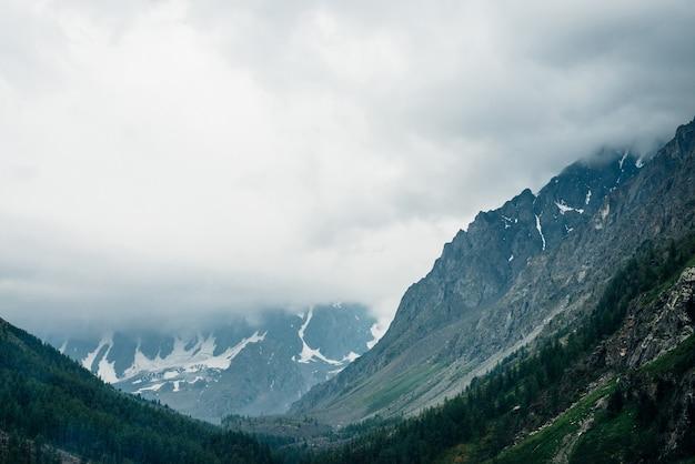 Красивый большой ледник за хвойным лесом на стороне холма под пасмурным небом.