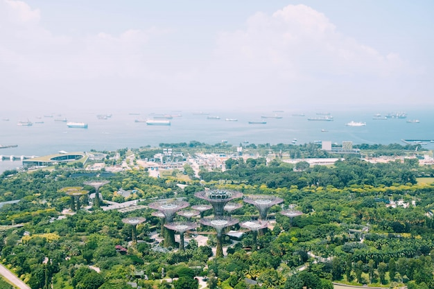 Красивый вид с высоты птичьего полета на сад у залива в сингапуре