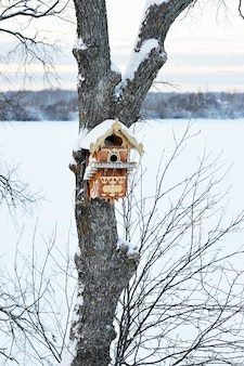 Beautiful birdhouse on the tree
