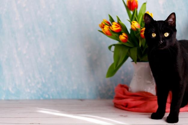 カラフルなチューリップの花束を持つ美しい黒と白の猫