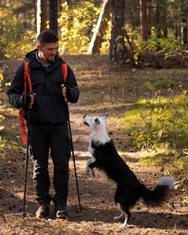 屋外で遊ぶ美しい黒と白の犬