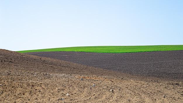 ウクライナの美しい黒い地球フィールド。農業の田園風景